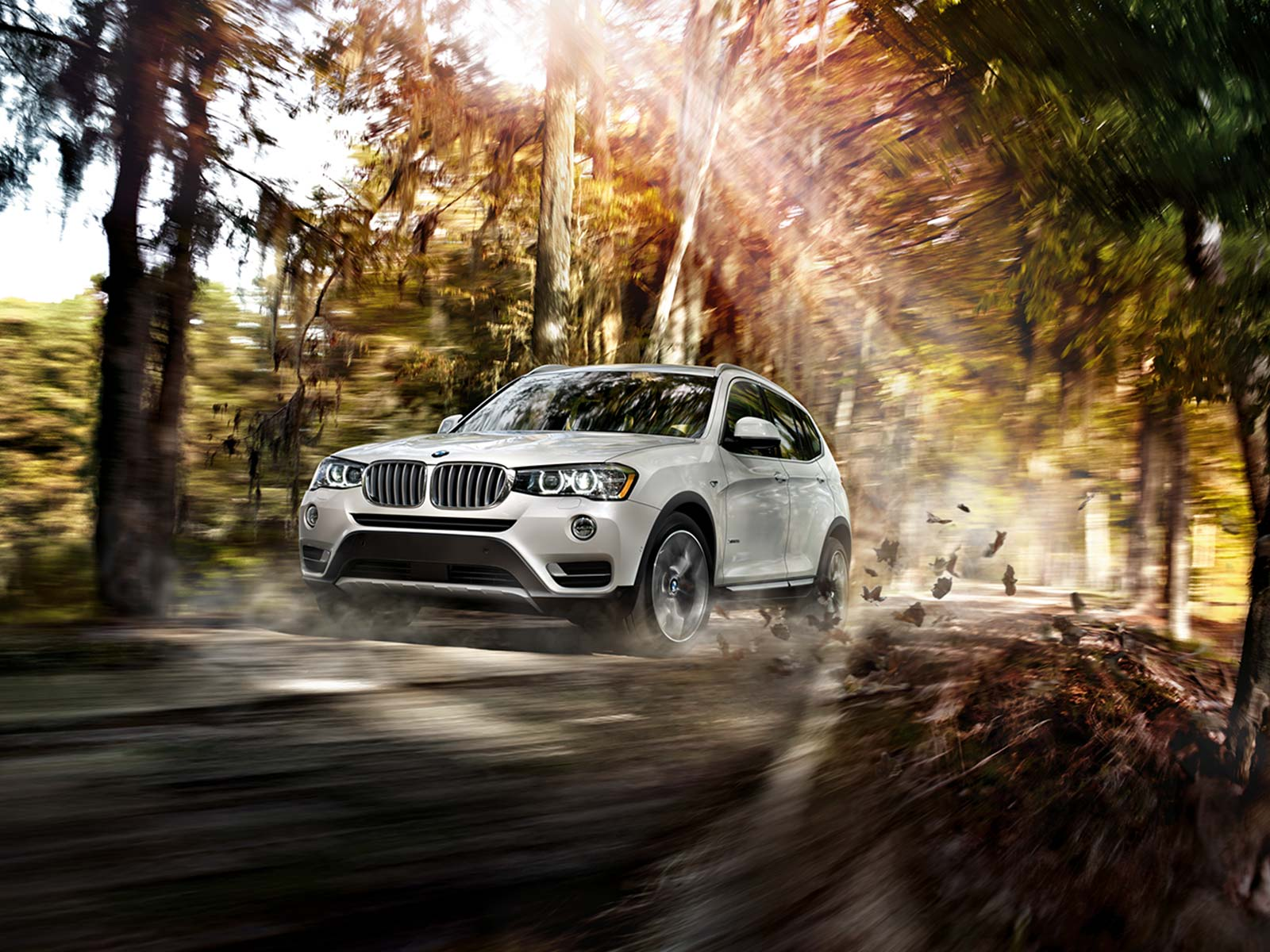 2017 BMW X3 xDrive35i Exterior Front View White
