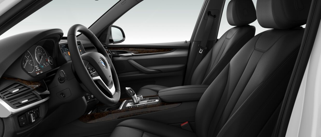 2017 BMW X5 XDrive 35i Interior Side