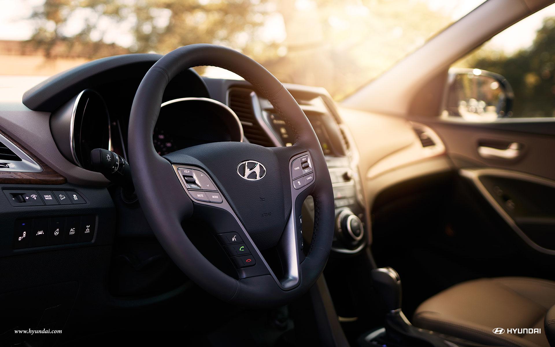 2017 Hyundai Santa Fe Interior Wheel