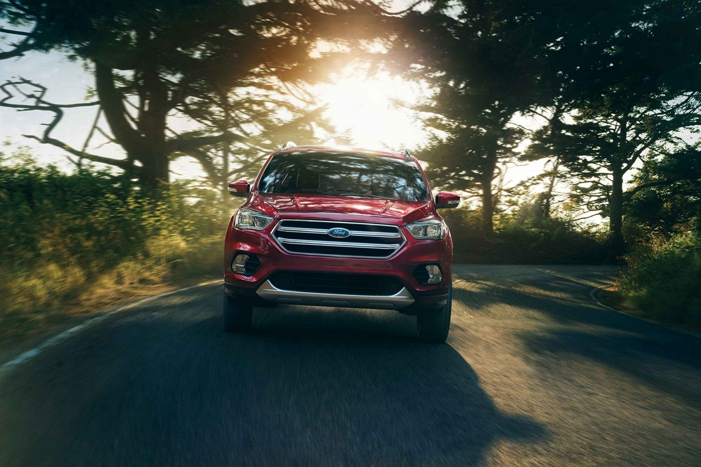 2019 Ford Escape Red Exterior Front View Picture