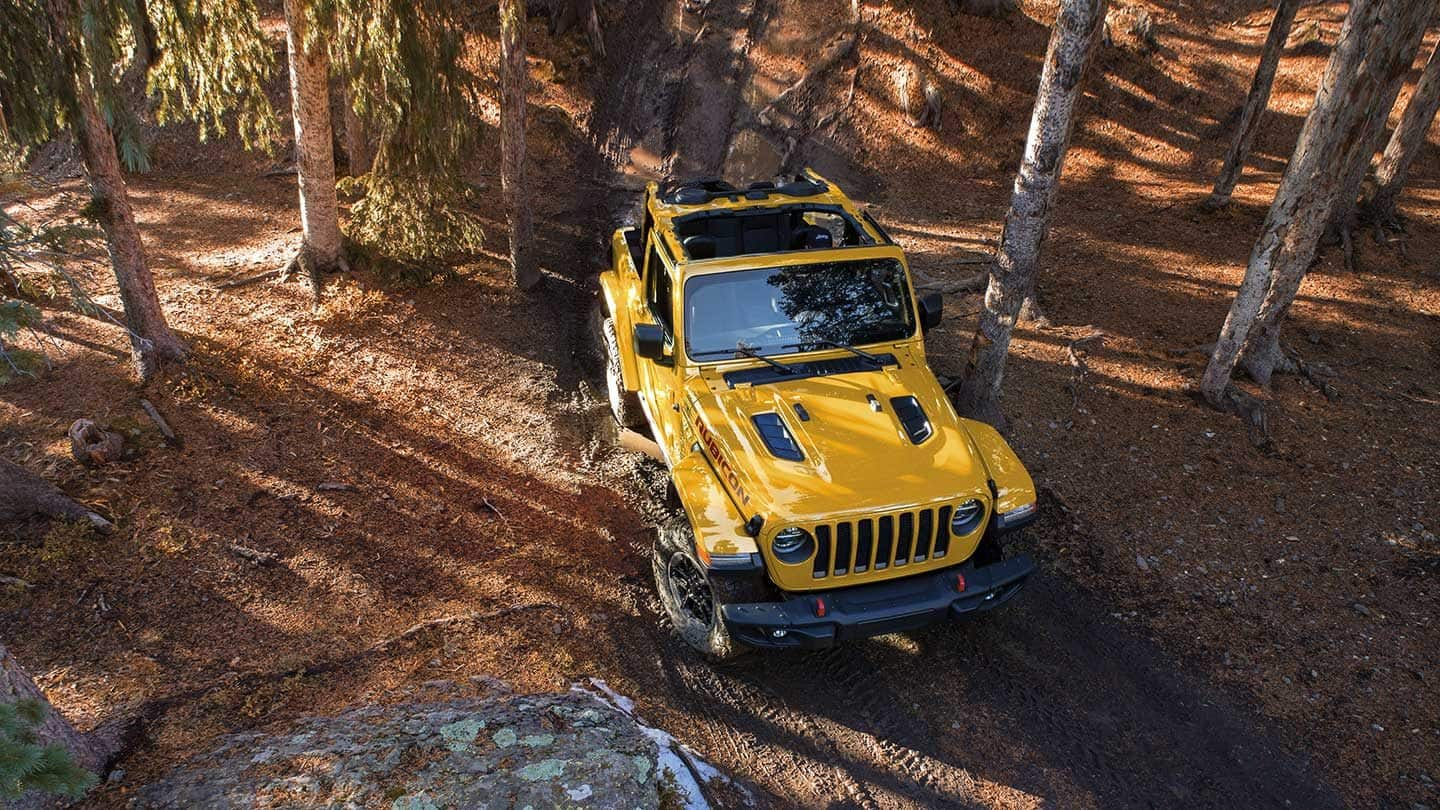 2019 Jeep Wrangler Yellow Exterior Top View