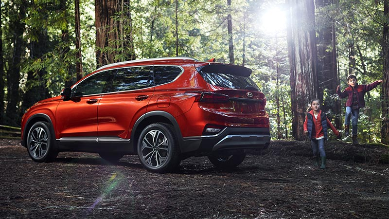 2020 Hyundai Santa Fe Side Red Exterior Picture